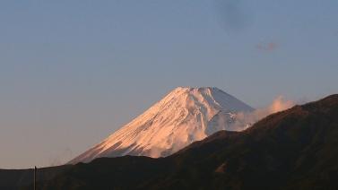 2001031.jpg