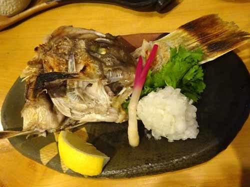 15白甘鯛カブト焼き