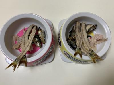 兄妹猫の朝食は釣りたてのウルメイワシのアラを焼いたもの