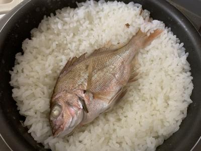 炊き上がった鯛飯