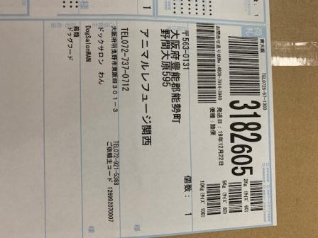 IMG_7565.jpg