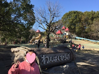 平塚市総合公園大型遊具