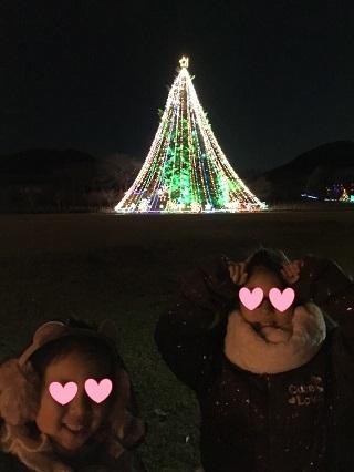 宮ケ瀬イルミネーションビックツリー