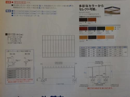 DSC06788.jpg