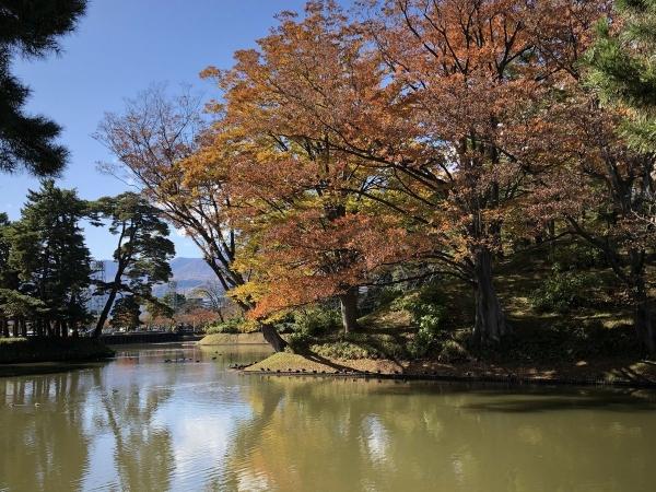 2019-11-15高田公園1
