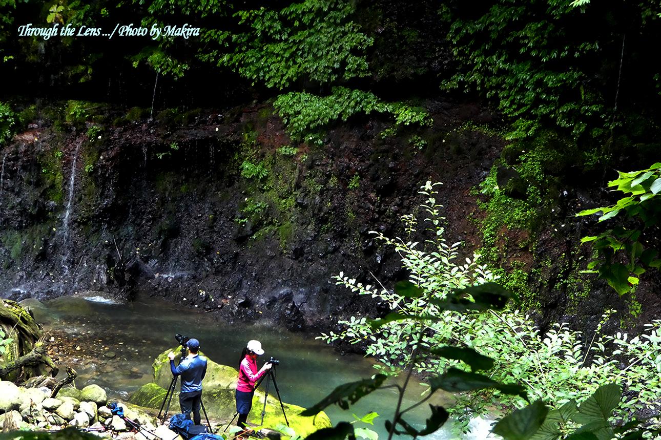 素簾の滝TZ4