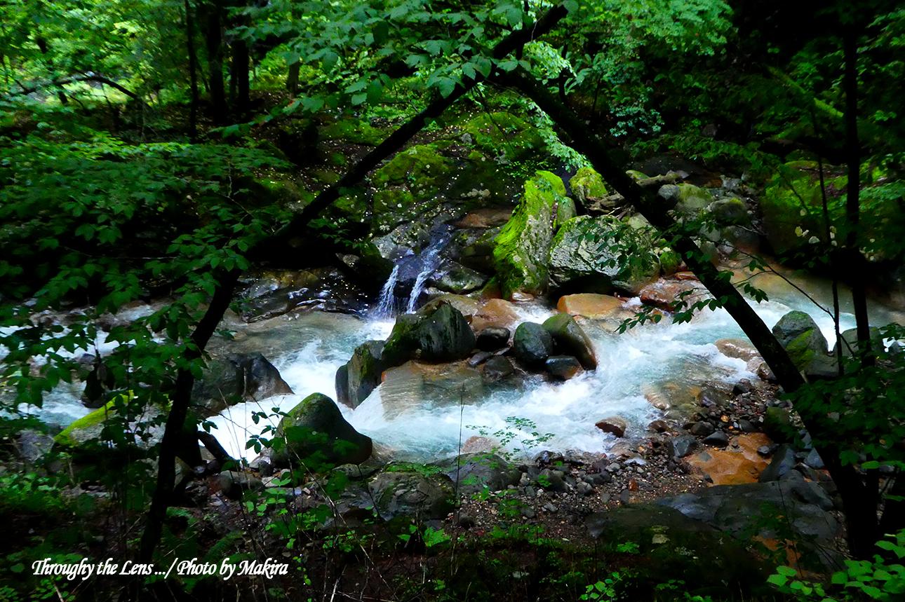 仁三郎の滝付近のスッカンブルーTZ2