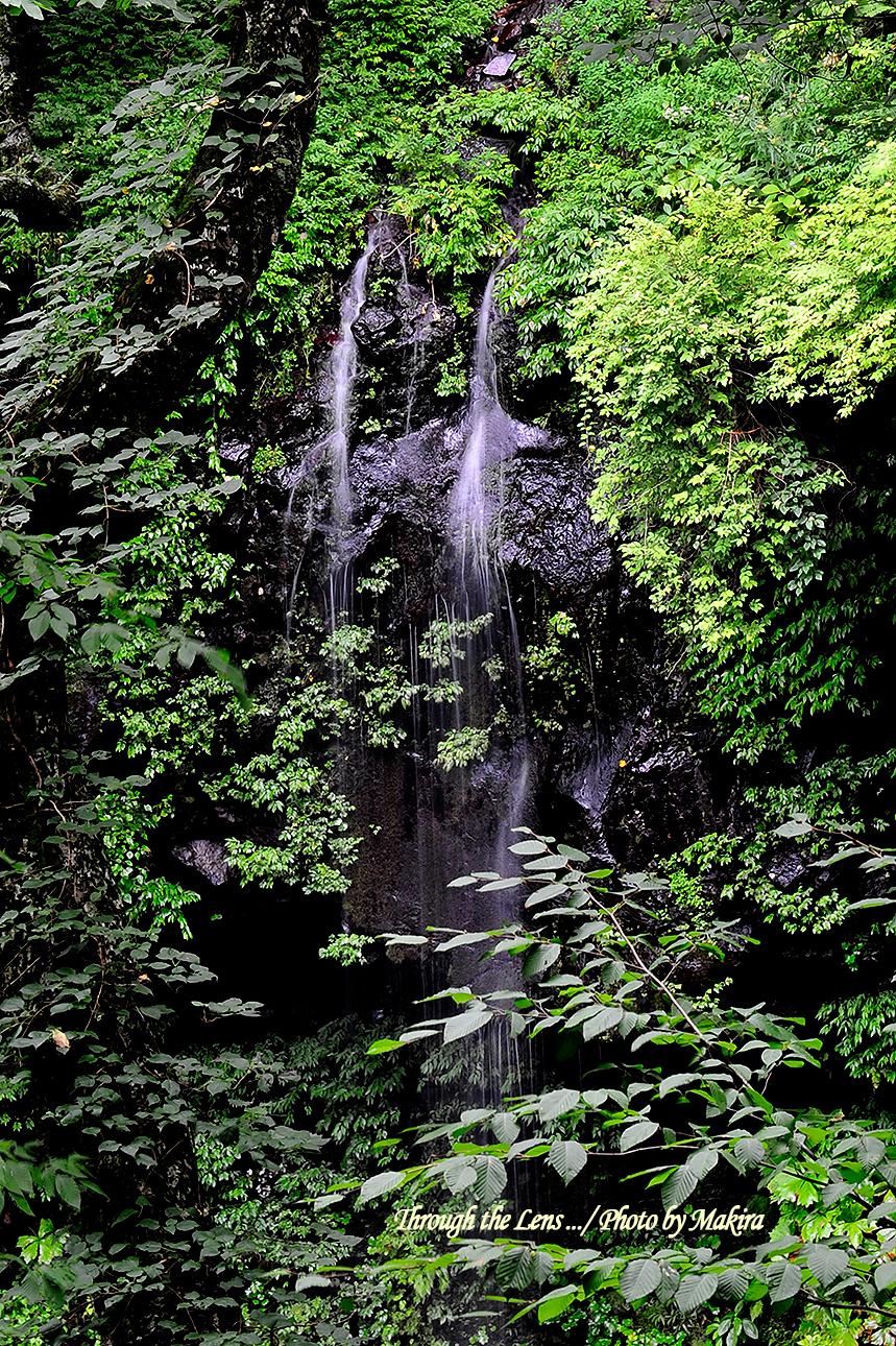 雄飛の滝付近1