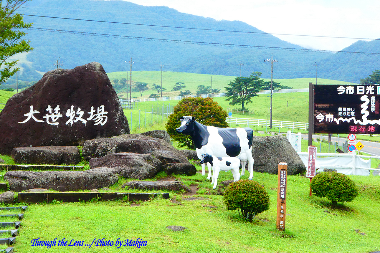 大笹牧場TZ1