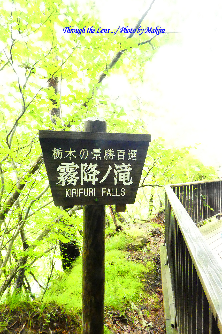 霧降の滝展望台TZ1
