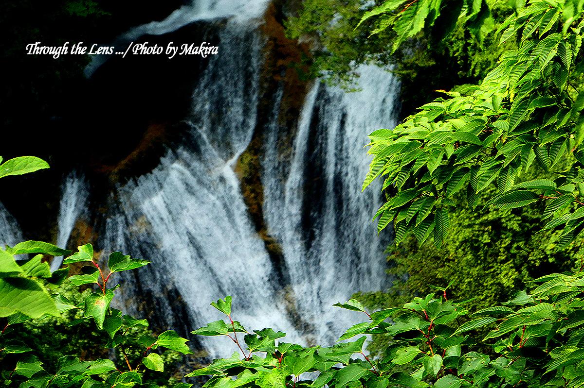 霧降の滝TZ5
