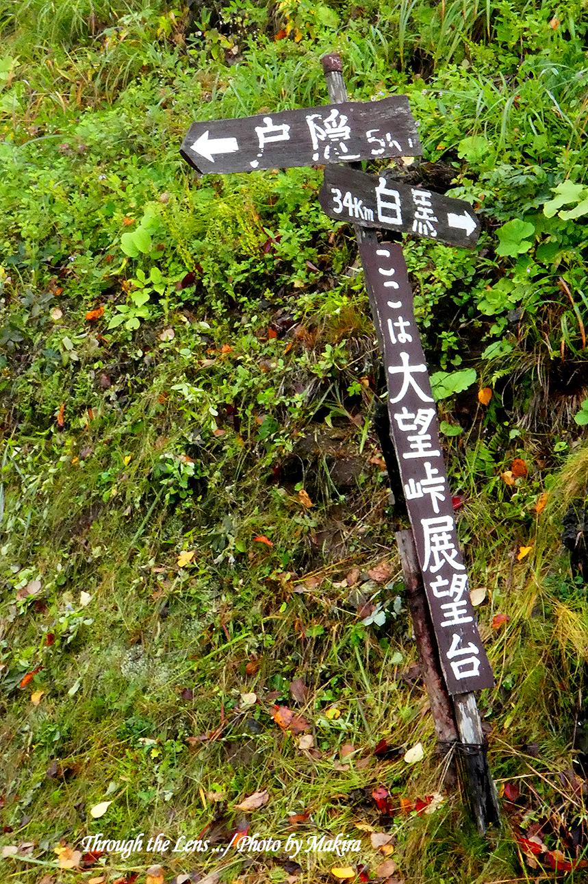 大望峠展望台表示TZ1