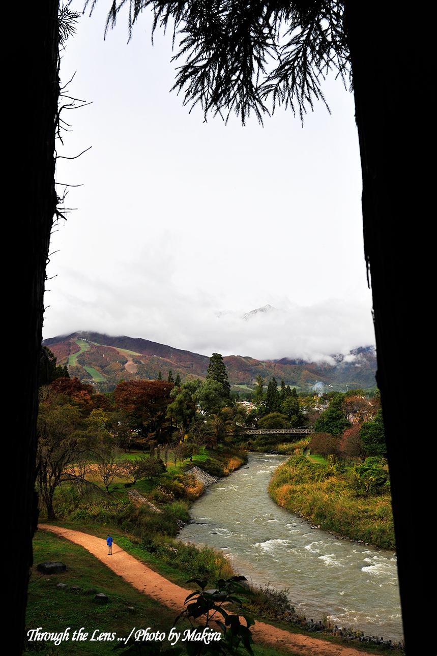 大出公園の釣り橋2