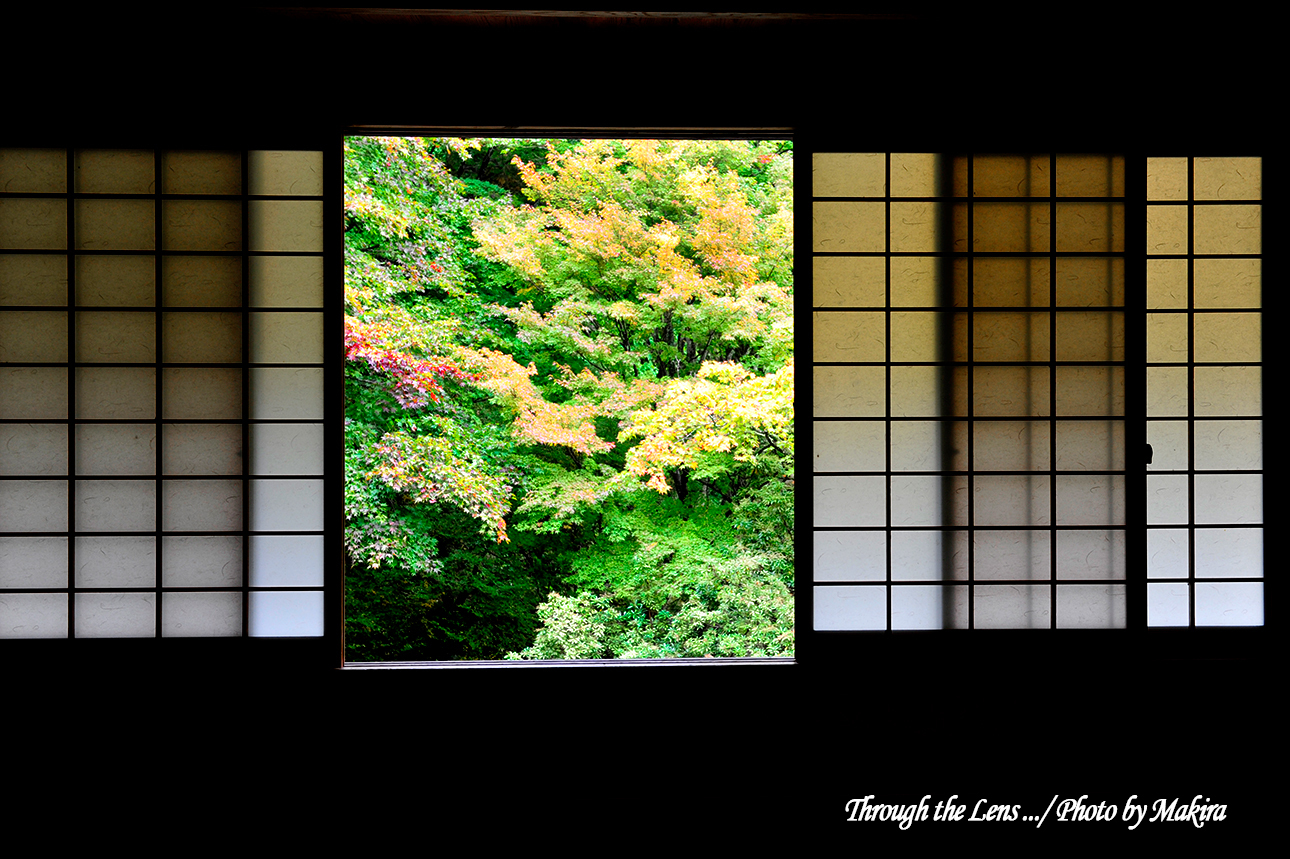 霊松寺本堂9