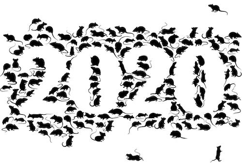 2020年賀状__