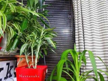 NANTONAKU 12-19 プチプチ効果がすごい 今年の冬はカーテンでも防寒