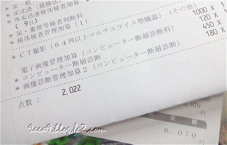 2020 1-9  尿路検査のCT撮影 他で 6,070円