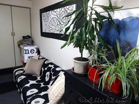 部屋の模様替え 2020 1-11 部屋の植物