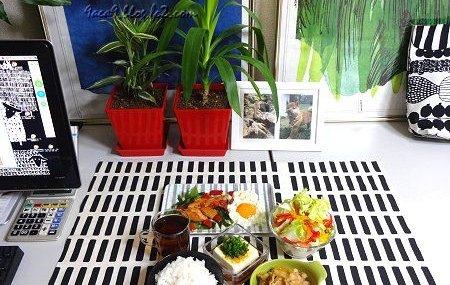 植物 部屋 ご飯