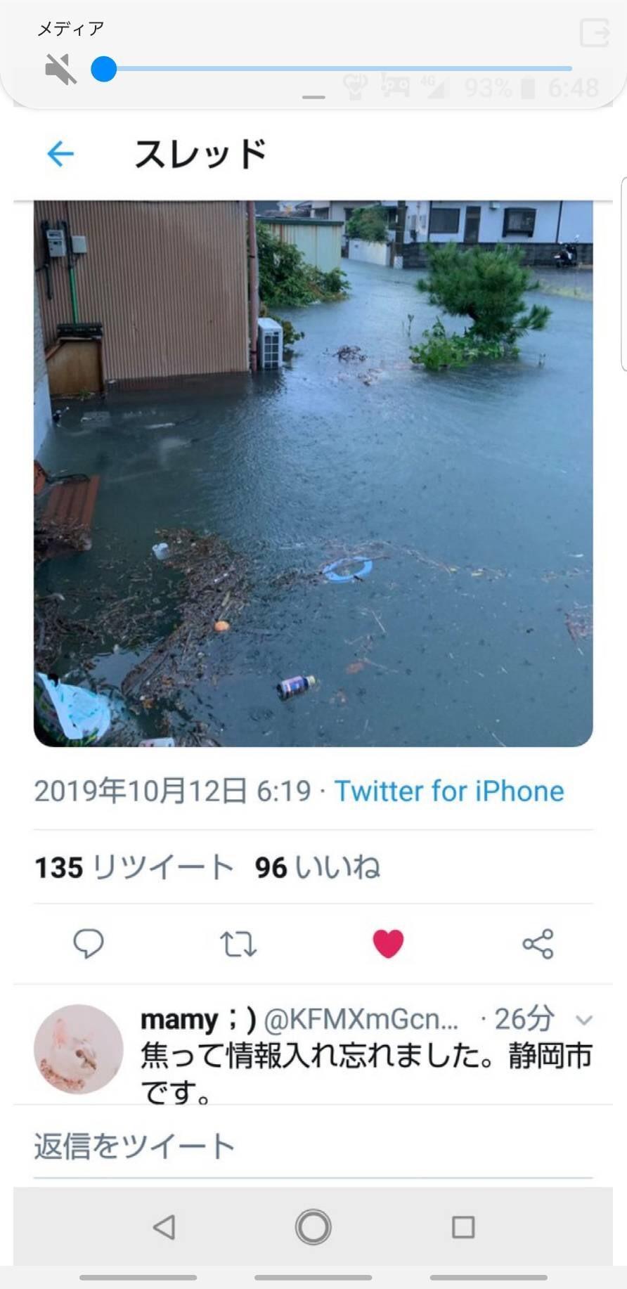 静岡市の被害