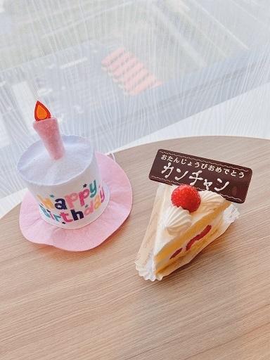 20センパ (4)