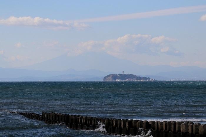 江の富士s