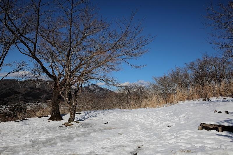 パノラマ台残雪s