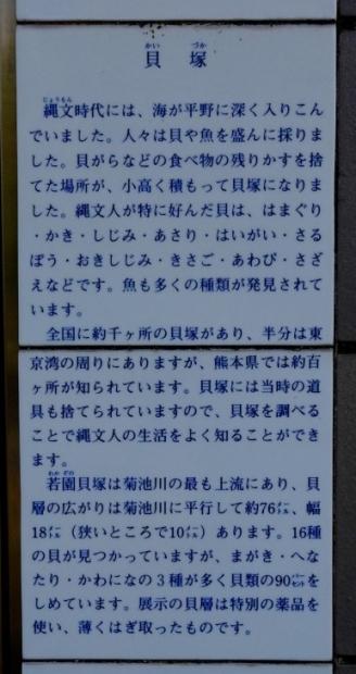 s-20年2月17日 (26)