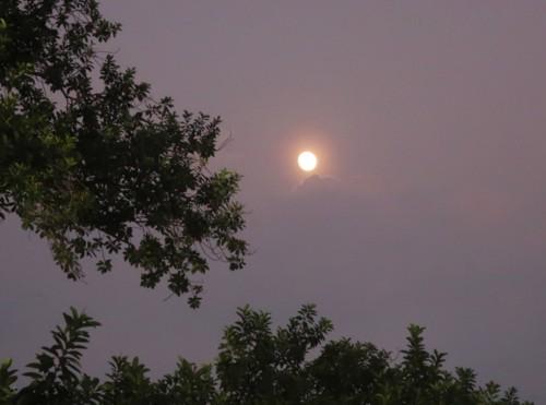 hagibis moon (60)