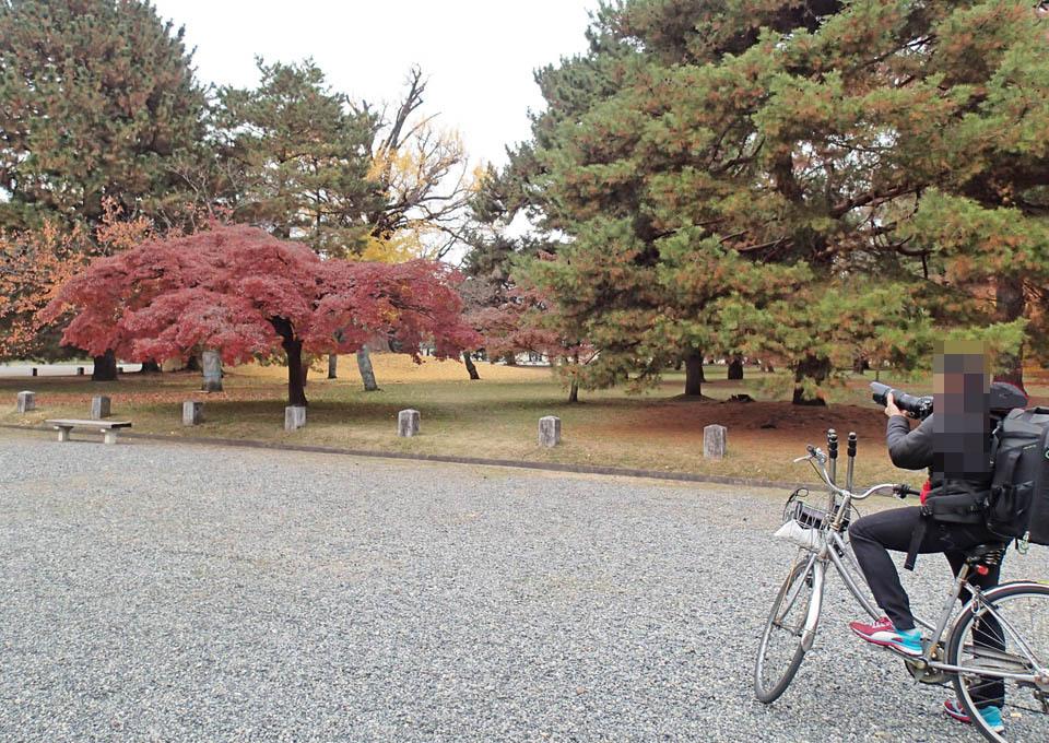 gyokadoh_204.jpg
