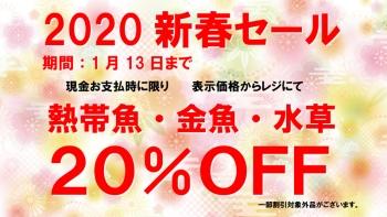 blog2020新春セール