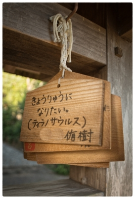 001-山田町-w1200-20191013
