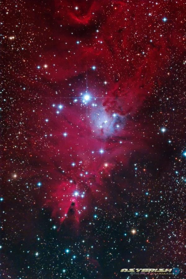 NGC2264_20200223.jpg