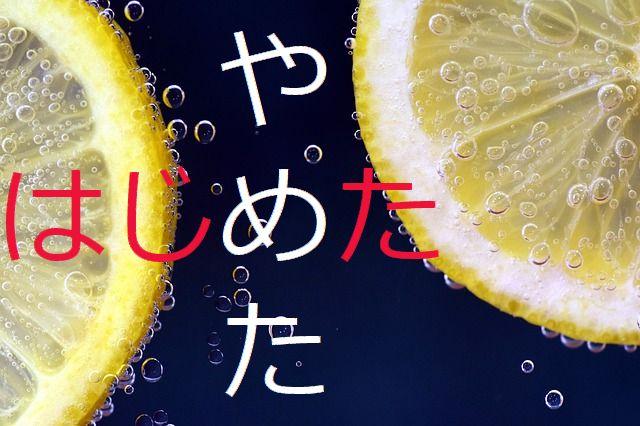 レモン 冬 イメージ文字入り