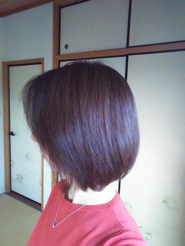 202001250731ヘアスタイル美容院から2ヶ月