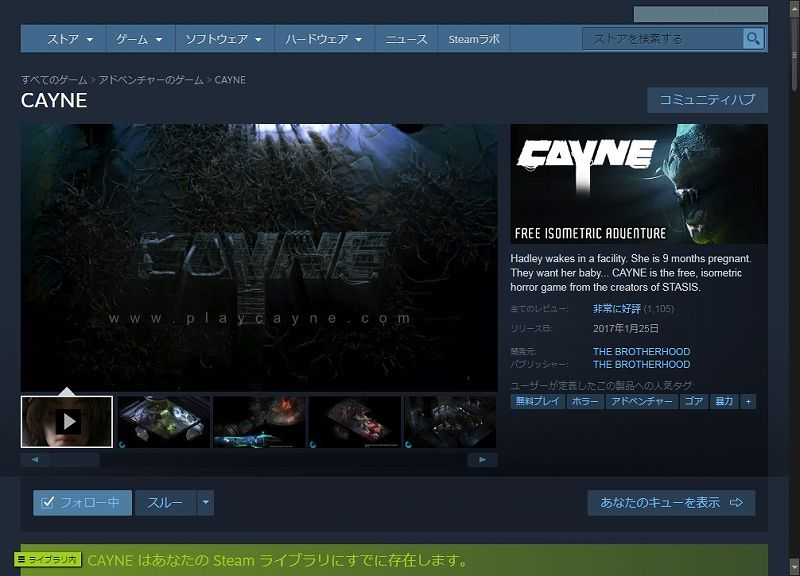 PC ゲーム CAYNE 日本語化メモ、PC ゲーム CAYNE 日本語化手順、Steam 版 CAYNE 日本語化可能