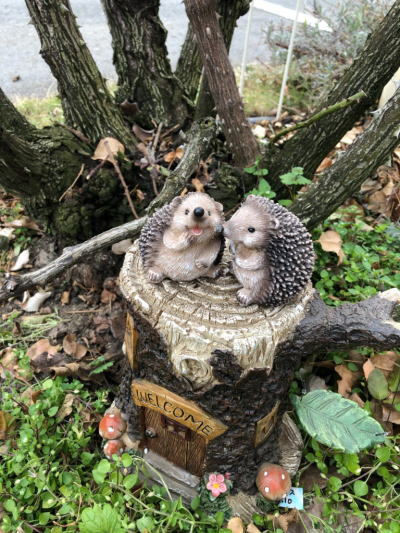 ブログ0215ハリネズミ