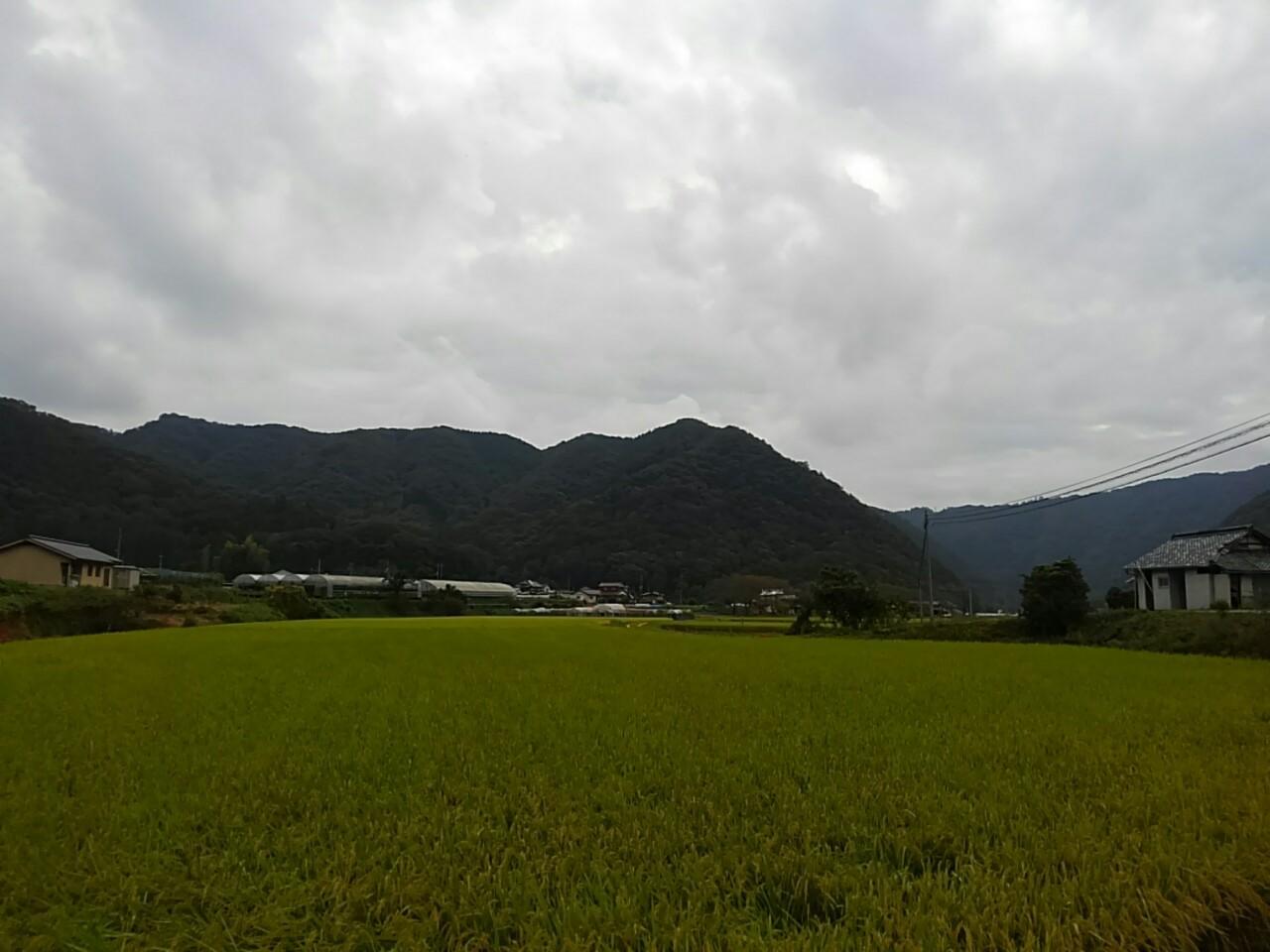 くぼのうえん_190930_0011.jpg