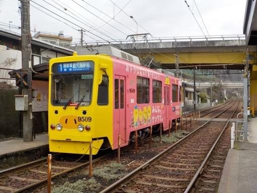 kagoshima2 (50)