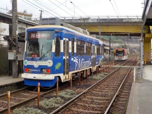 kagoshima2 (46)