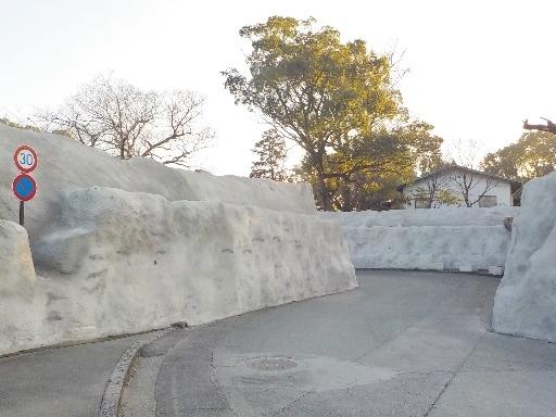 kagoshima2 (8)
