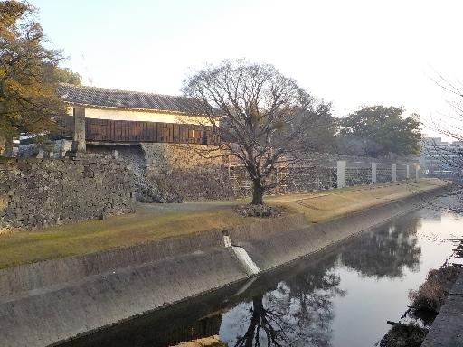 kagoshima2 (4)
