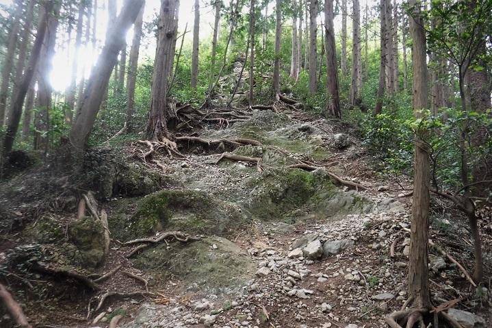 4 19.9.24 官の倉山~石尊山 (80)