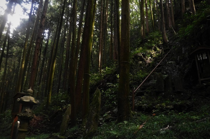 7 19.9.24 官の倉山~石尊山 (169)