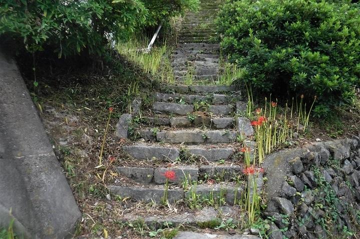 19.9.24 官の倉山~石尊山 (25)