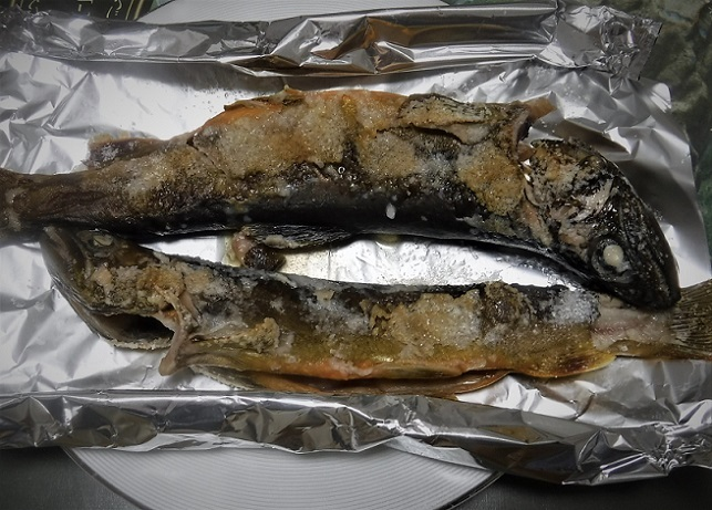 19.10.19 美味い岩魚の塩焼き (10)