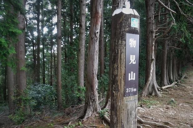 2 19.10.24 日和田山→五常の滝一人ハイク (80)