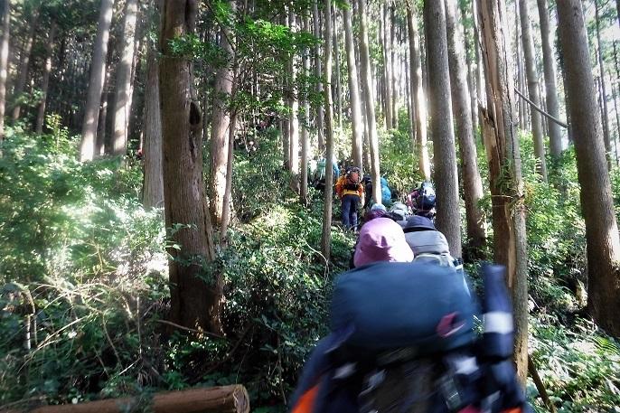 19.11.10 ユカデ~北向地蔵小島初山行 (21)
