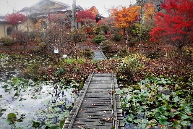 19.11.15-16 磐梯熱海旅行4人組 (128)