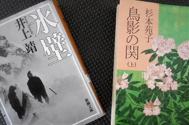 4 19.11.17 団地 掃除、本「氷壁」ほか (20)
